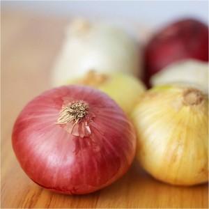 El poder curativo de la cebolla